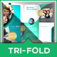 Multipurpose Tri-Fold Brochure - Expert Pro - GraphicRiver Item for Sale