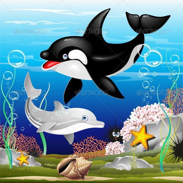 GraphicRiver Dolphin and Killer Whale Cartoon on the Ocean 5344119