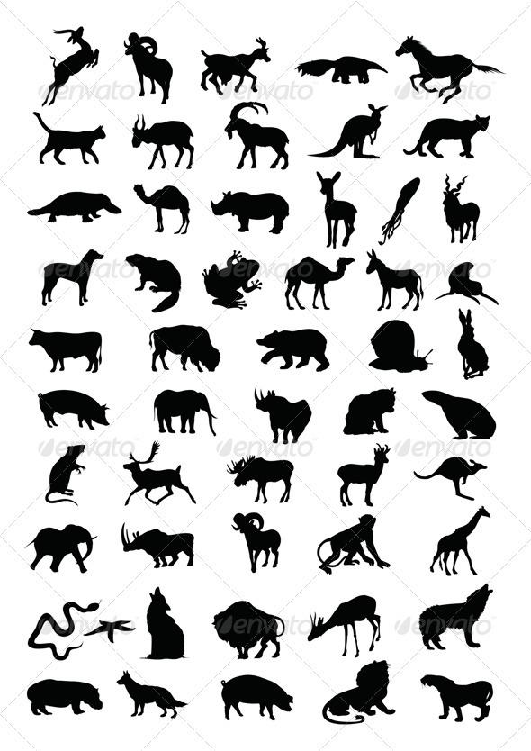 GraphicRiver Animal 550156