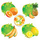 Tropical Fruit - GraphicRiver Item for Sale