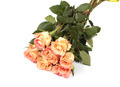 Peach roses bouquet - PhotoDune Item for Sale