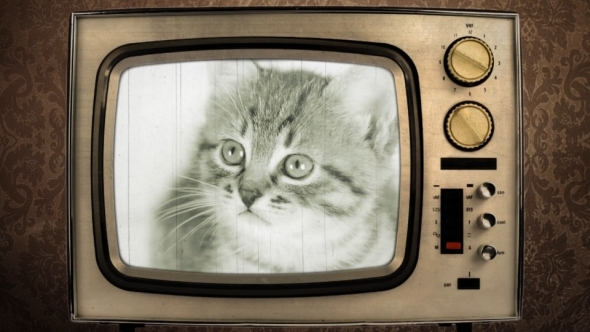 VideoHive Retro TV 5365843