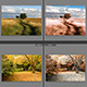 6 Lightroom Color Effect  - GraphicRiver Item for Sale