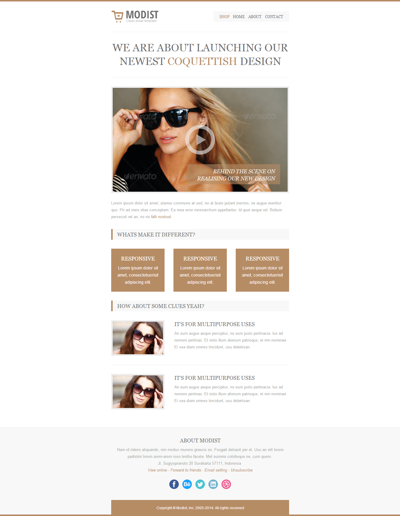 Modist, Responsive Fashion Email Template