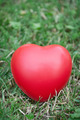 Red heart on grass - PhotoDune Item for Sale