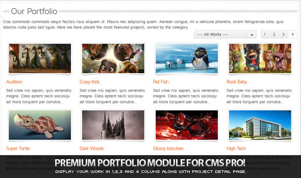 CodeCanyon Portfolio Module for CMS pro 554064