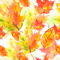 Watercolor leaves colorful seamless autumn background - PhotoDune Item for Sale