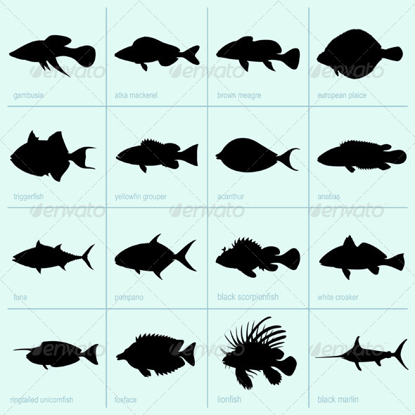 GraphicRiver Sea Fishes 5417780