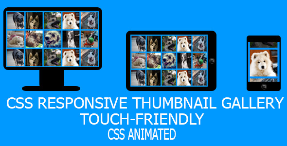 CodeCanyon CSS Responsive Touch-Friendly Gallery with Effects 5430242