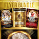 Dydier44 Bundle (Flyer Template 4x6) - GraphicRiver Item for Sale