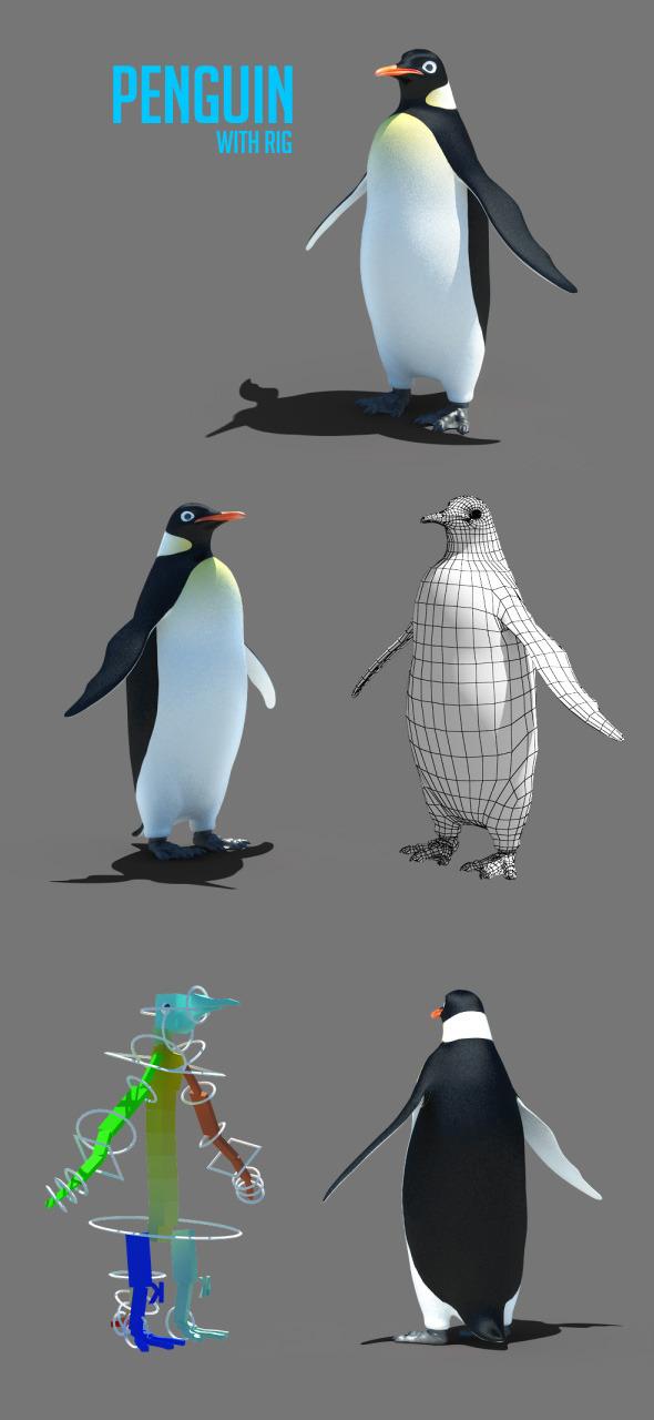 3DOcean Penguin 5431840