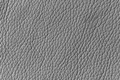 Silver Artificial Leather Background Texture - PhotoDune Item for Sale