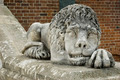 A lion statue - PhotoDune Item for Sale