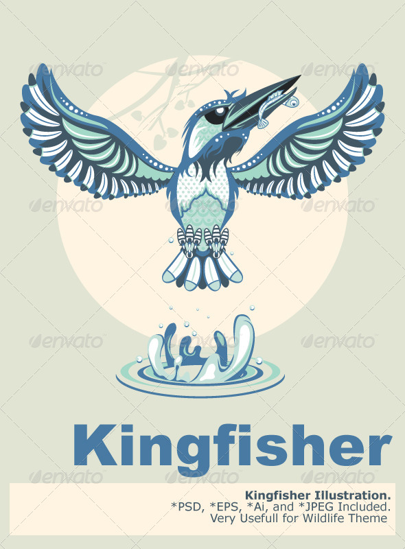 GraphicRiver Kingfisher 5458449