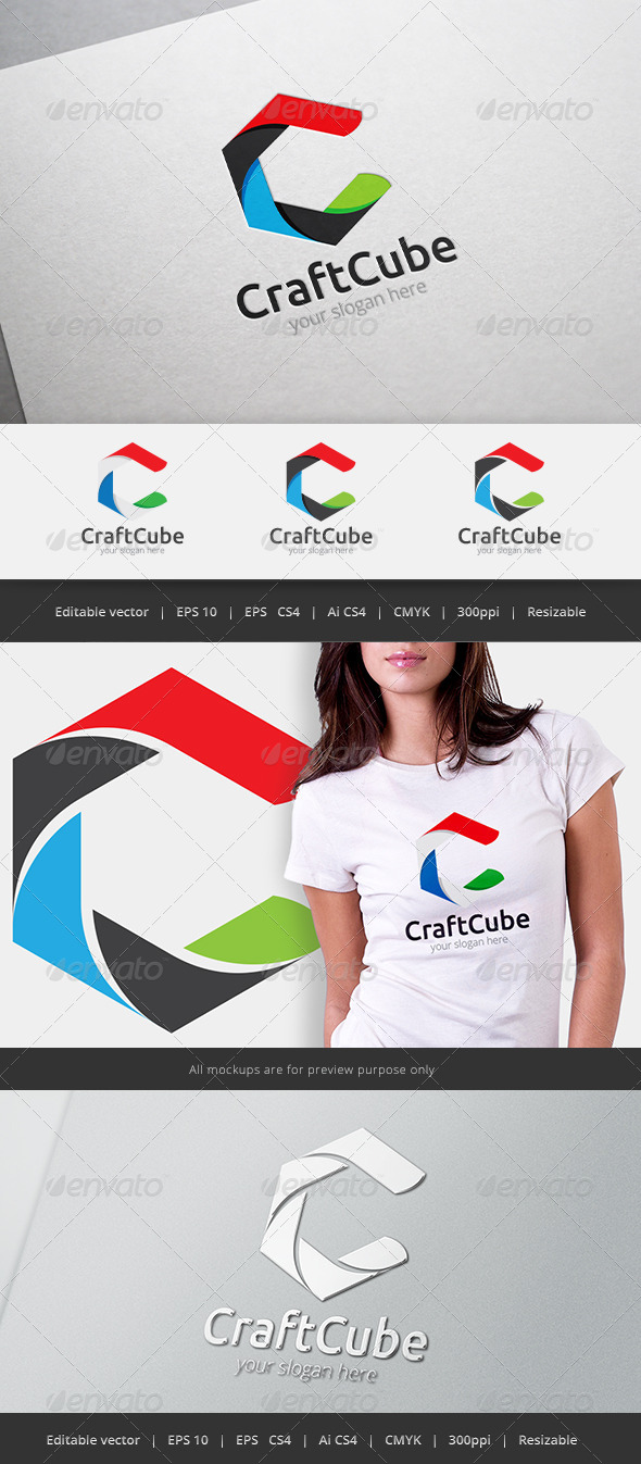 GraphicRiver Craft Cube Logo 5460125