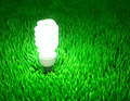 Energy saving light bulb - PhotoDune Item for Sale