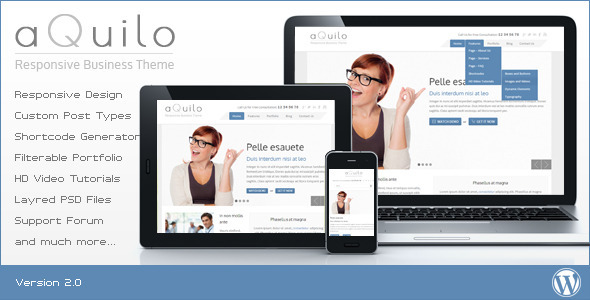 Aquilo - Responsive Wordpress Theme - Business Corporate