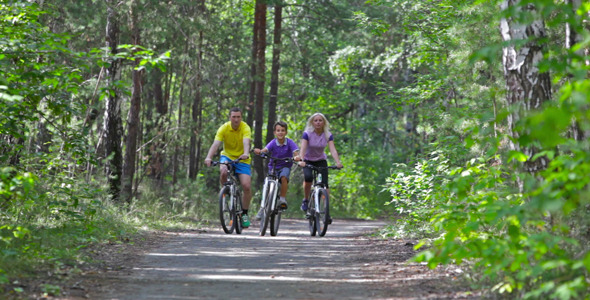 VideoHive Family Ride 5485348