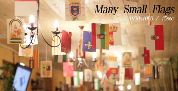 VideoHive Many Small Flags 5486573