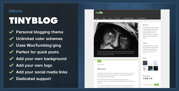 tinyBlog - WordPress Tumblog Theme - Blog / Magazine WordPress