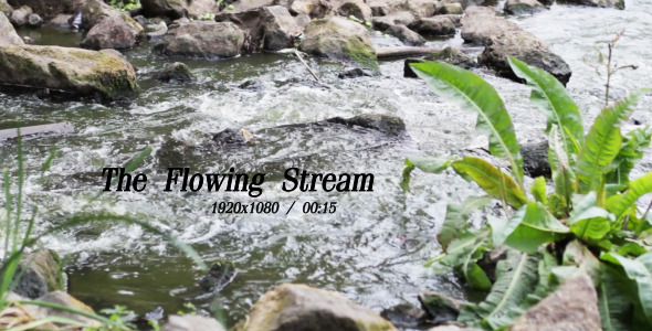VideoHive The Flowing Stream 4 5491900