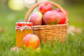 Basket with red apples in autumn - PhotoDune Item for Sale