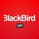 BlackBird | Responsive Multi-Purpose Theme