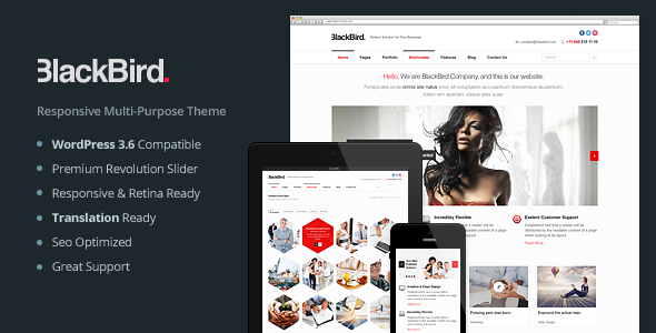 ThemeForest BlackBird Responsive Multi-Purpose Theme 5520674