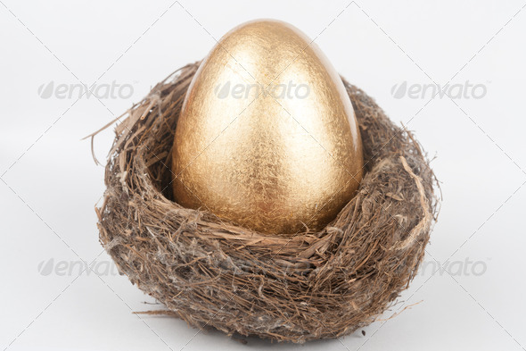 Golden egg in bird nest - Stock Photo - Images