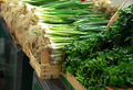 Green spring onion on market - PhotoDune Item for Sale