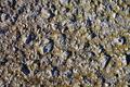 Texture - Concrete 2 - PhotoDune Item for Sale