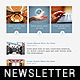 Creative Design Multipurpose Newsletter Template - GraphicRiver Item for Sale
