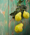 Yellow Pears - PhotoDune Item for Sale
