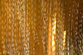 Gold - PhotoDune Item for Sale