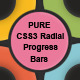 PURE CSS3 Radial Animated Progress Bars - CodeCanyon Item for Sale