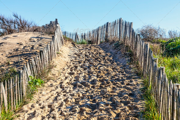 Atlantic Dune - Stock Photo - Images