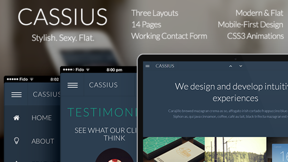 ThemeForest Cassius Modern & Flat Multi-Purpose Template 5566091
