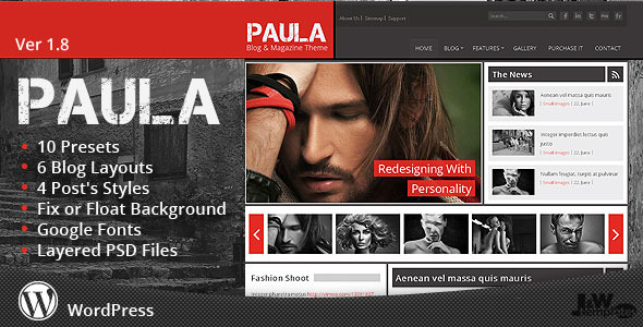 Paula - Blog & Magazine Wordpress Theme