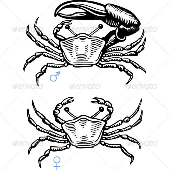GraphicRiver Crabs 5576739