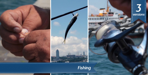VideoHive Fishing 5576749