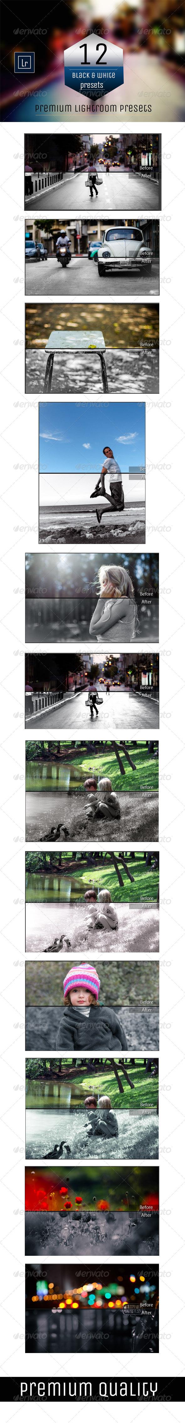 GraphicRiver 12 B&W Premium Presets 5577642