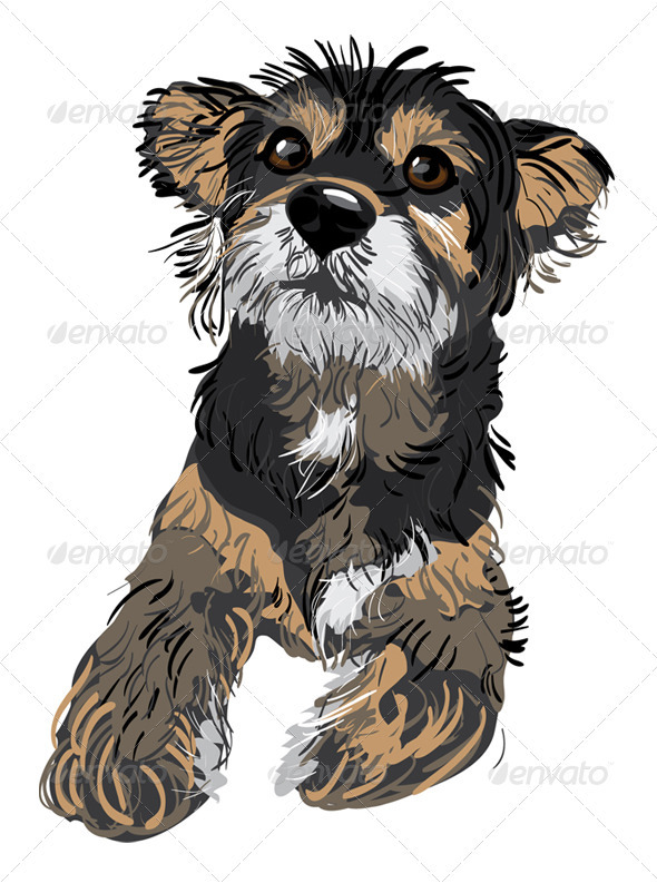 GraphicRiver Cute small dog 575634