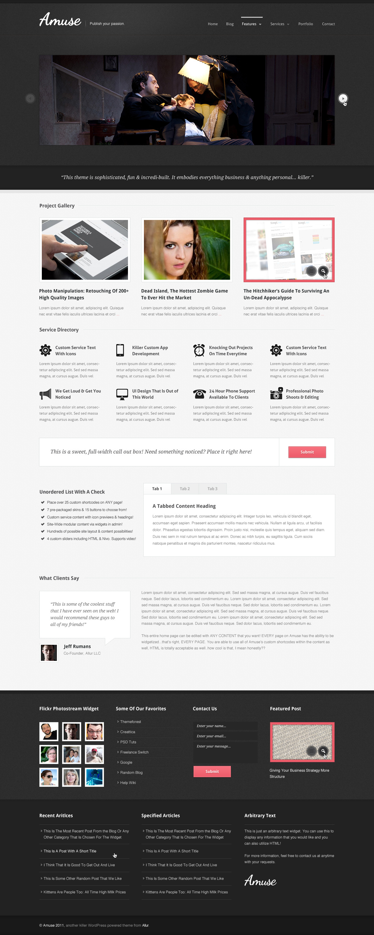 Amuse: A WordPress Business & Portfolio Theme