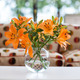 orange lilies in a vase - PhotoDune Item for Sale