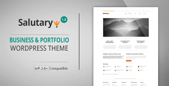 Salutary - Business & Portfolio WordPress Theme - Portfolio Creative