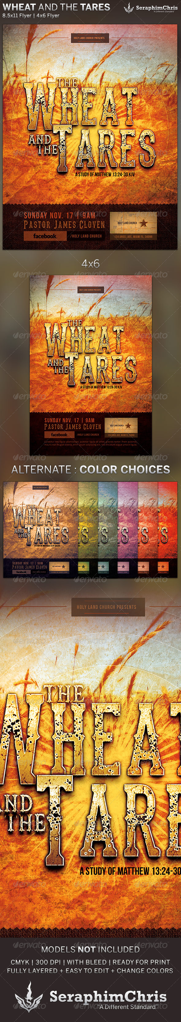 GraphicRiver Wheat and the Tares Church Flyer Template 5641312