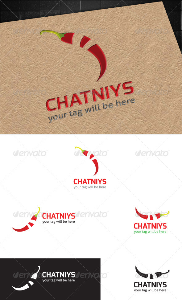 GraphicRiver Chatniys Logo 5635713