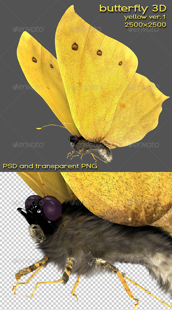 GraphicRiver 3D Yellow Butterfly 5649426