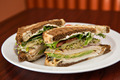 Turkey on Rye Sandwich - PhotoDune Item for Sale