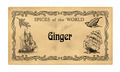 Spice label Ginger - PhotoDune Item for Sale